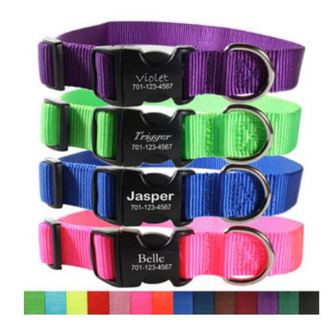 personalized nylon dog collars with custom engraved buckle