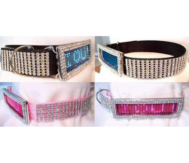 custom LED dog collar