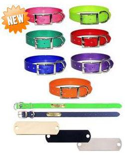 custom name plate dog collar