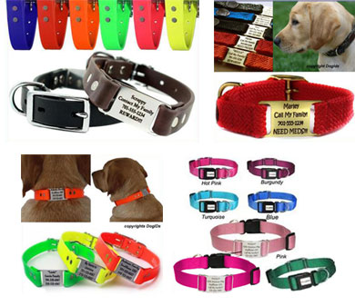 custom name plate dog collars, dog name collars