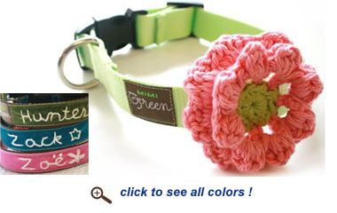 hand embroidered designer dog collar with flower
