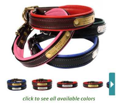 padded leather dog collars personalized