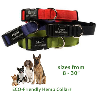 personalized buckle dog collars
