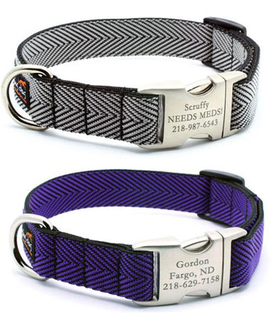 personalized dog collars silver purple