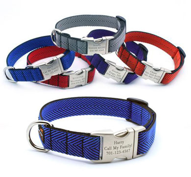 personalized dog collars with custom engraved buckle