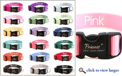 personalized webbing dog collars