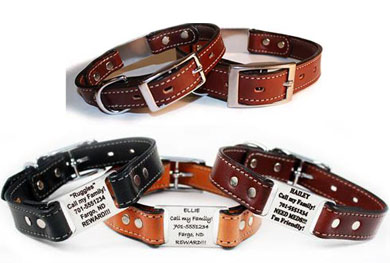 custom leather dog collars with scrufftag tag
