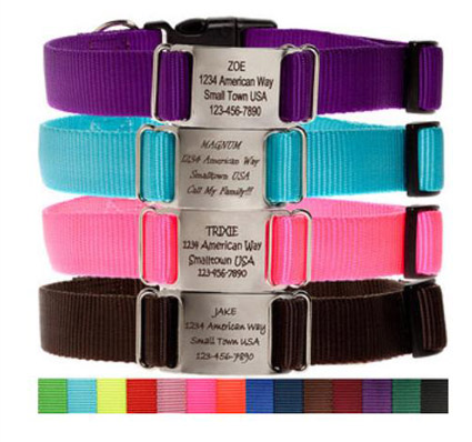 personalized nylon dog collars with name plate
