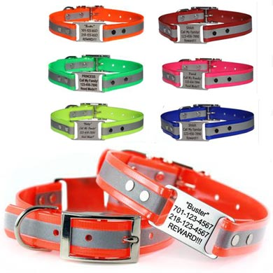 custom reflective dog collars with scrufftag tag